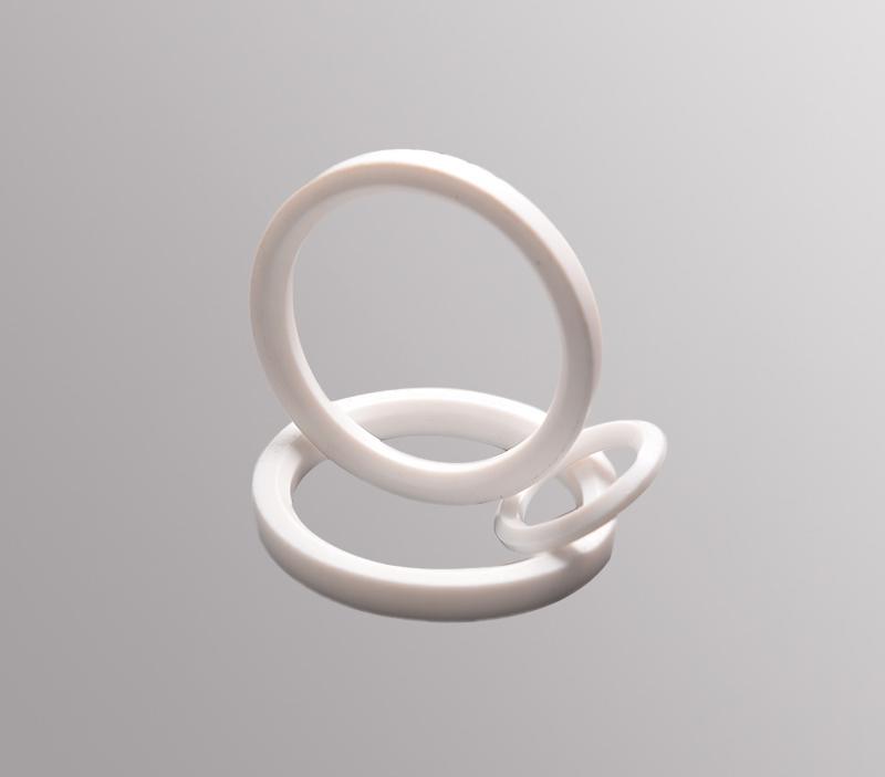 PTFE Seat Ring SG-T4302